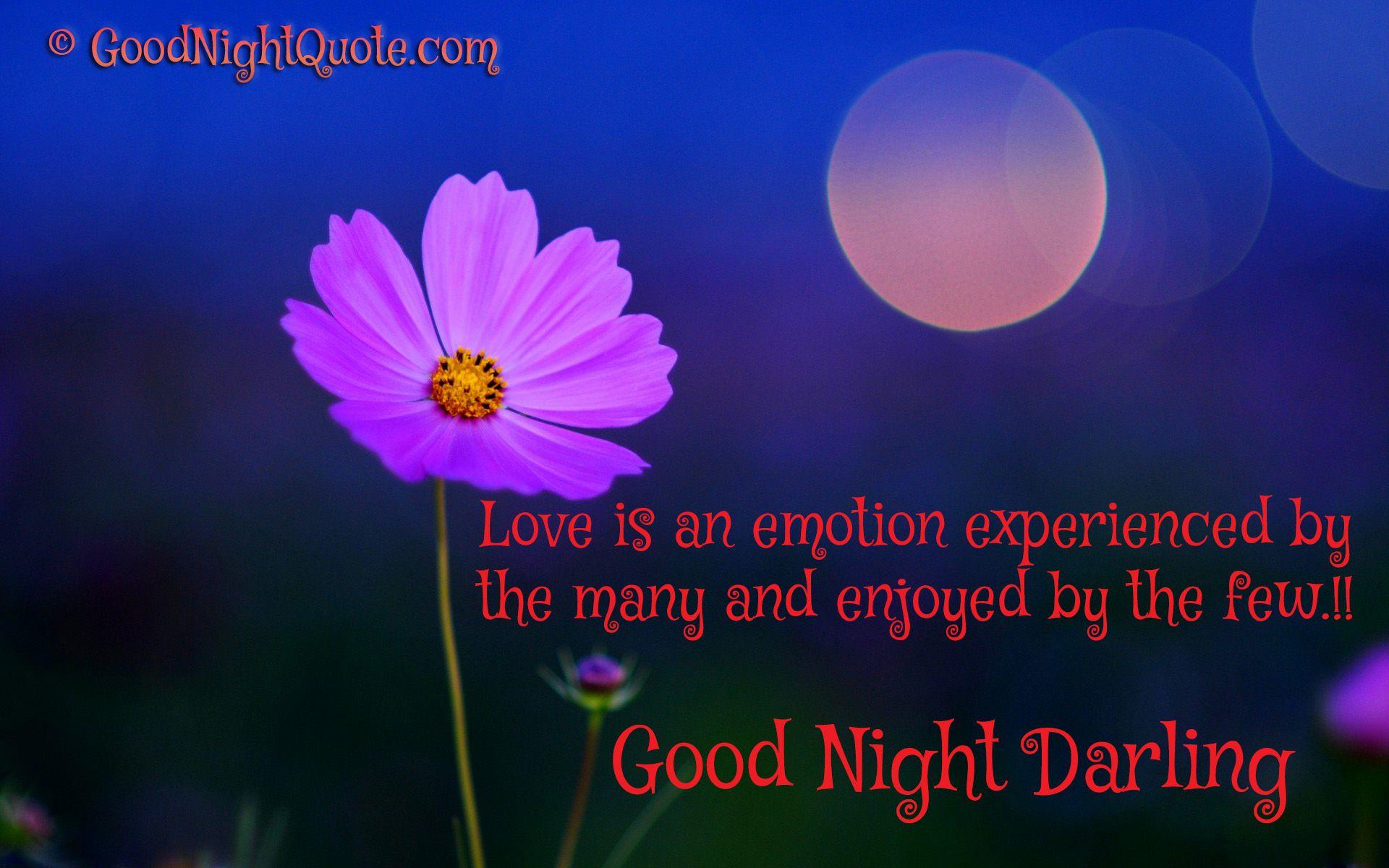 buonanotte mio amore