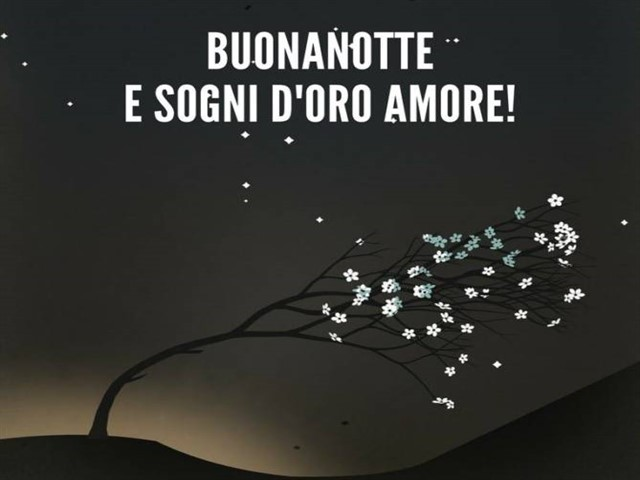 Dolce notte amore