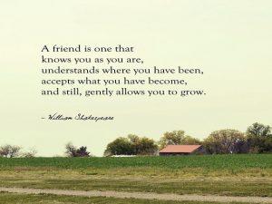 aforismi amici
