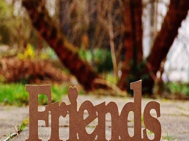 amicizia a distanza aforismi