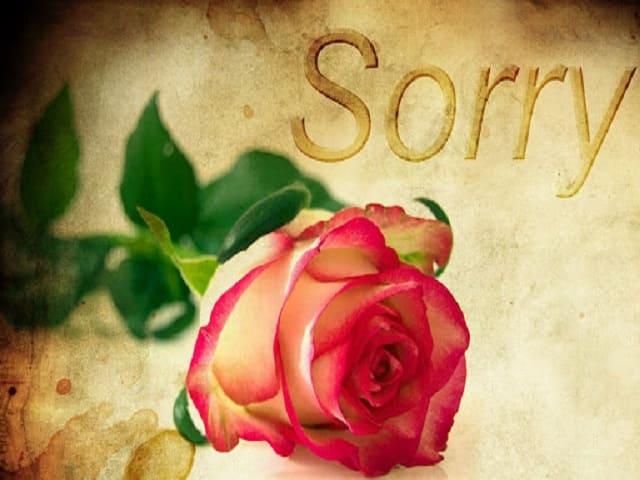 gesti per farsi perdonare