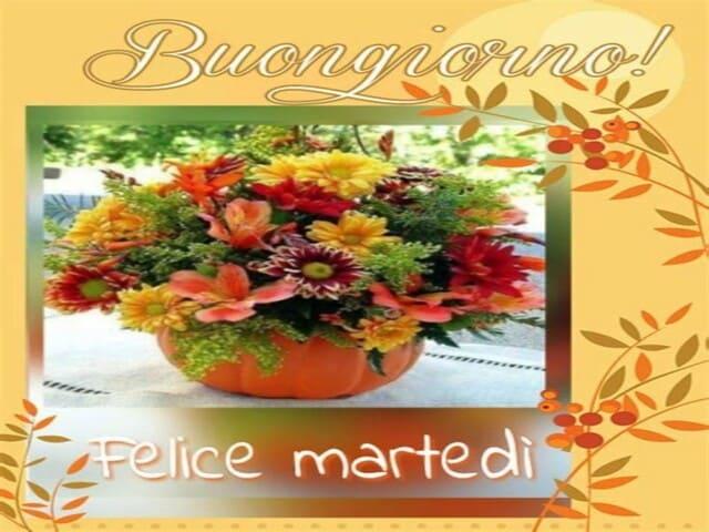 buon martedì con fiori 4