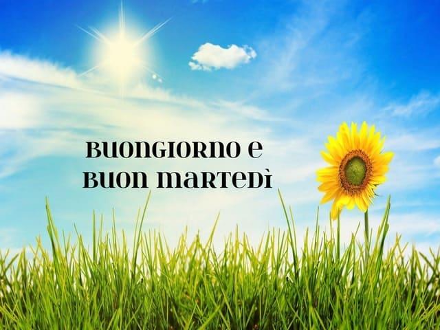 Buongiorno con il sole 2