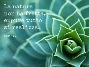 frasi belle sulla natura