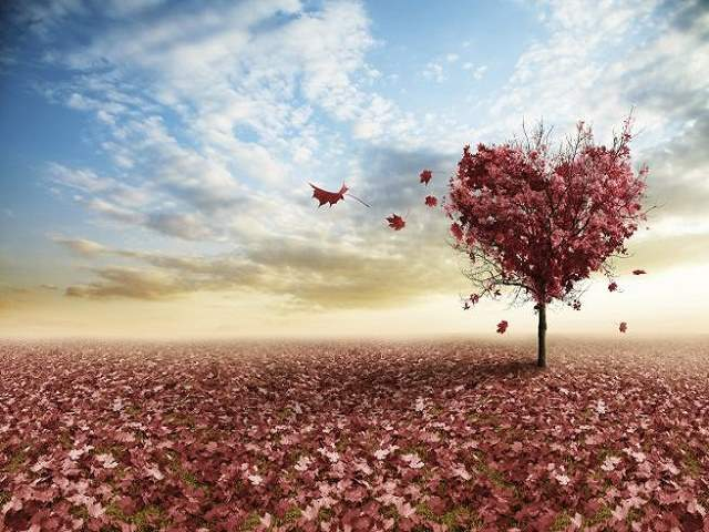 frasi sul tempo perso in amore