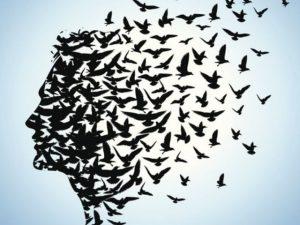 frasi sulla libertà di scelta