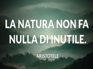 frasi sulla natura famose
