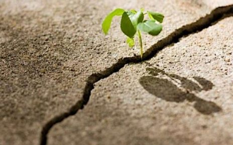 frasi sulla speranza