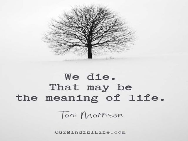 senso della vita frasi