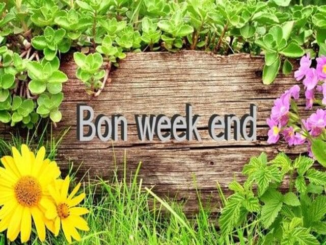 buon fine settimana in francese 2