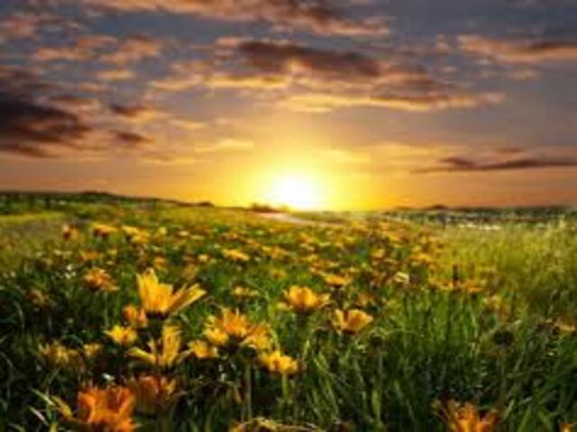 frasi sul sorgere del sole