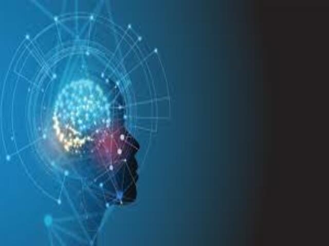 Frasi sull'intelligenza e la bellezza