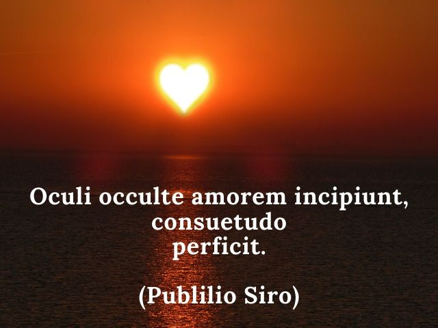 aforismi d'amore in latino