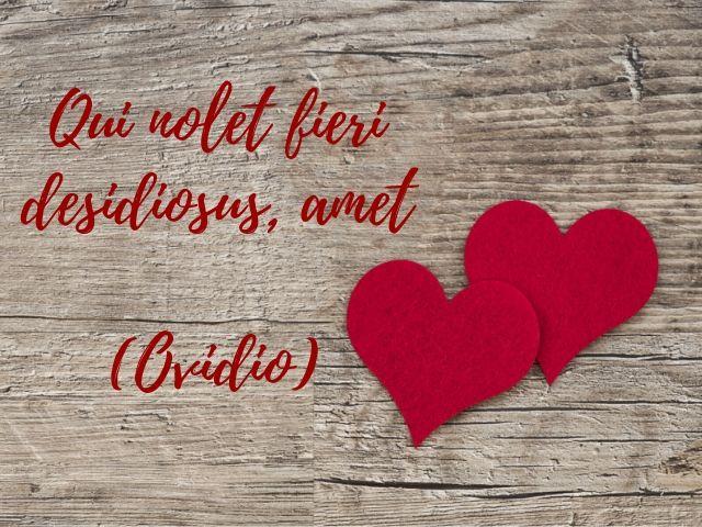 aforismi in latino sull'amore
