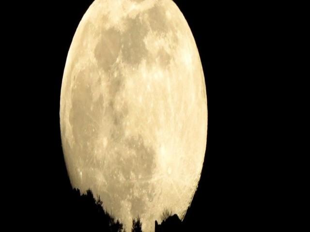 aforismi luna