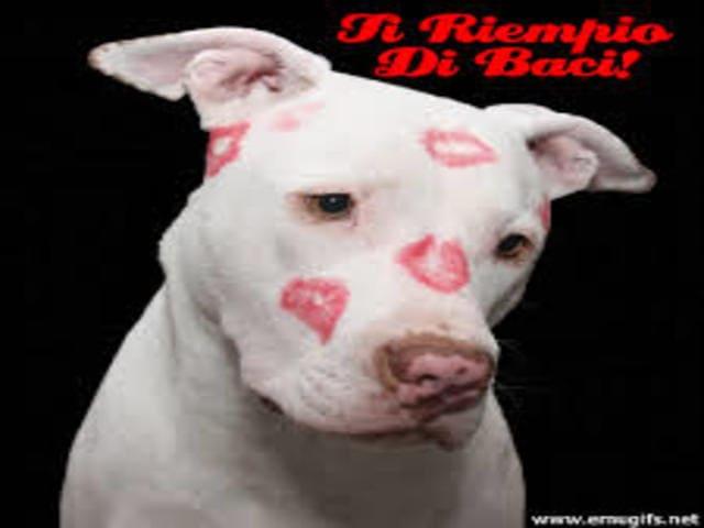 bacio immagini divertenti 1