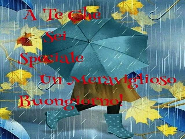 buongiorno con la pioggia immagini divertenti