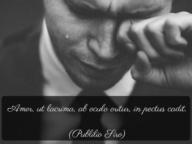 frasi celebri d amore in latino