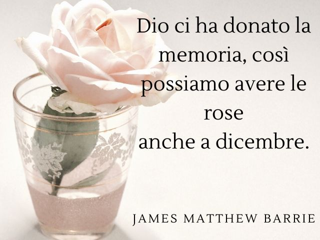 frasi d amore con rose