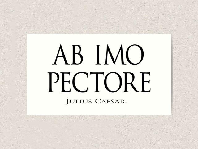 frasi d'amore in latino con traduzione