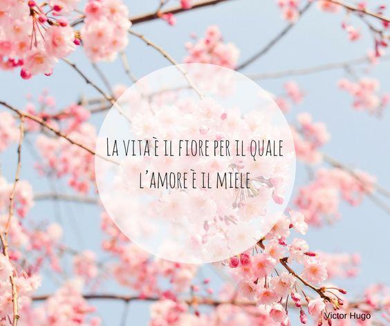 frasi d amore sui fiori