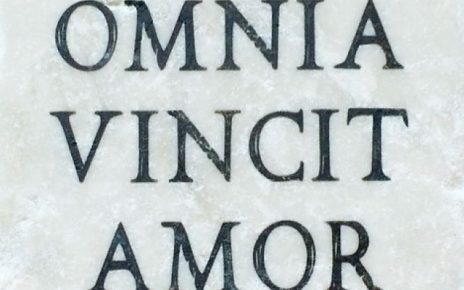frasi d'amore in latino