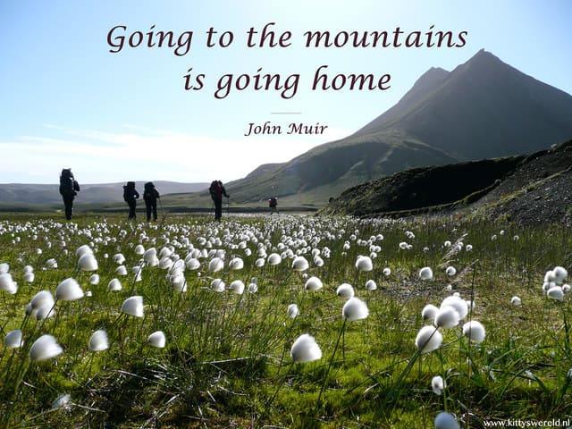 frasi montagna estate