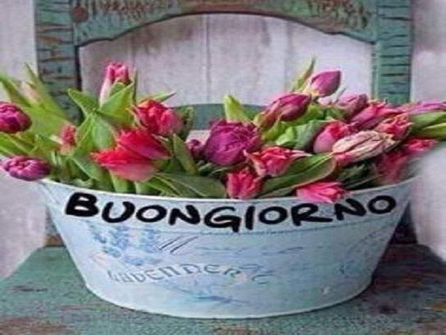 frasi per i fiori