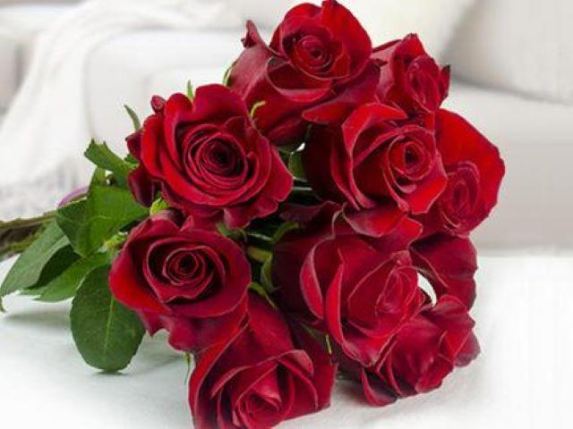 frasi rose