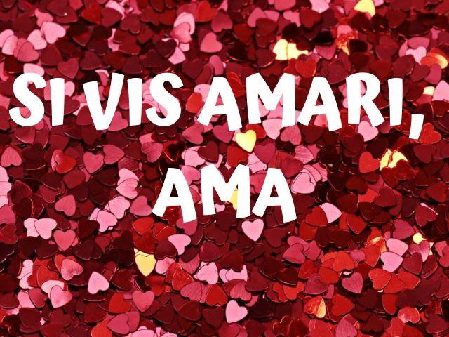 frasi sull'amore in latino