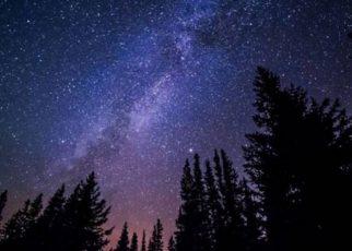 frasi sulle stelle