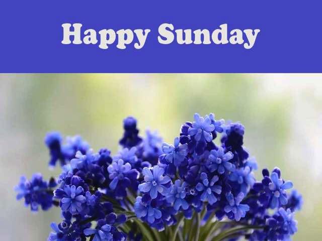 imm di buona domenica