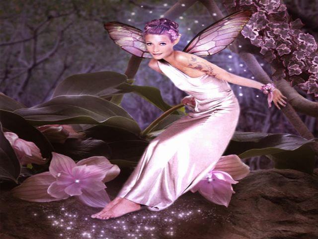 immagini angeli cherubini