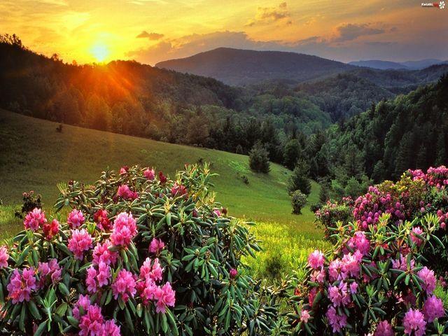 immagini di tramonti montagna