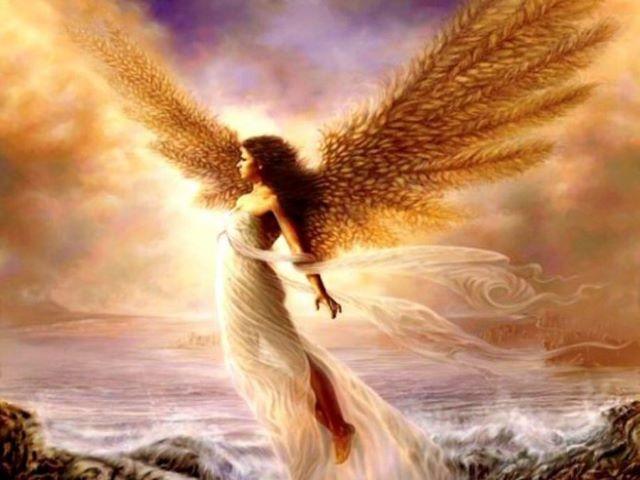 immagini sugli angeli