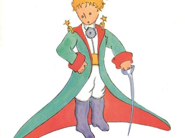 frasi piccolo principe rosa