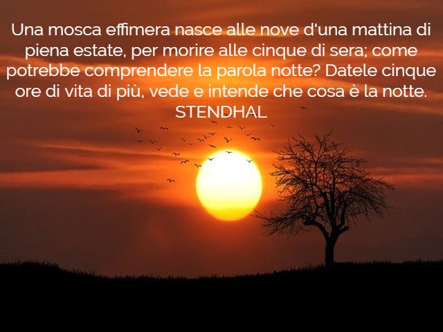 sere d'estate frasi 3