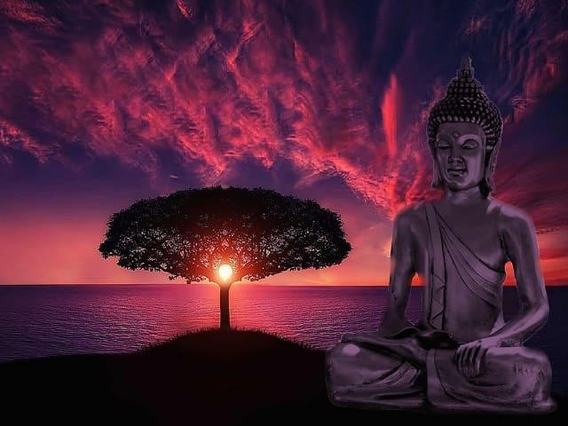 aforismi brevi zen
