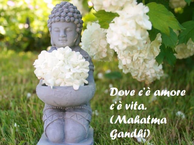 aforismi zen sull'amore