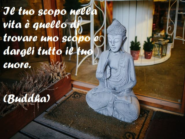 buddismo zen frasi