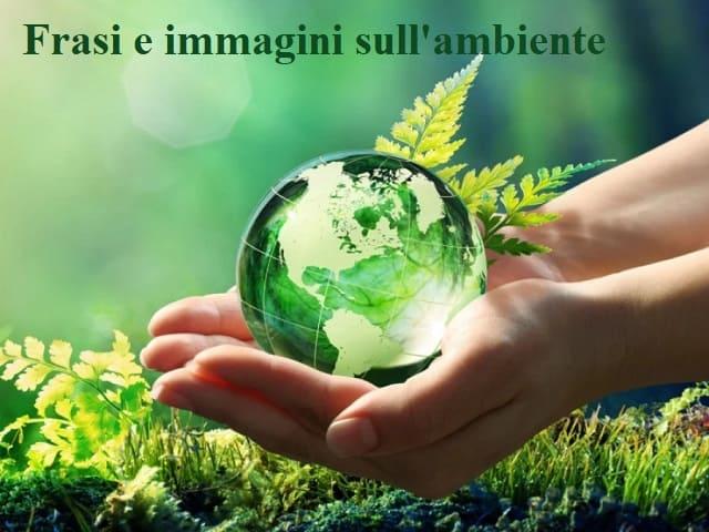 frasi e immagini sull'ambiente