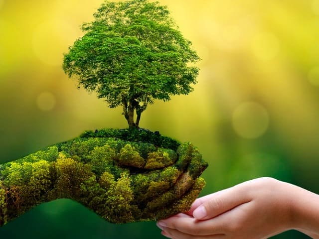 frasi per tenere pulito l'ambiente