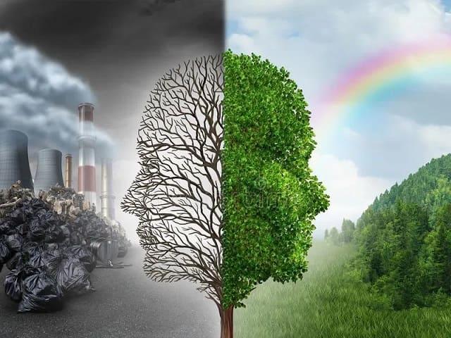 frasi sull'ambiente