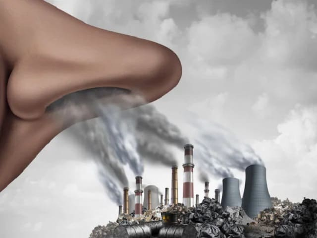 frasi sull'ambiente inquinato