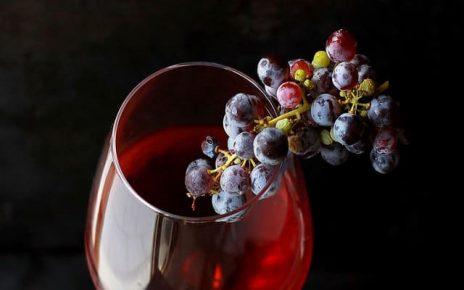 frasi sul vino