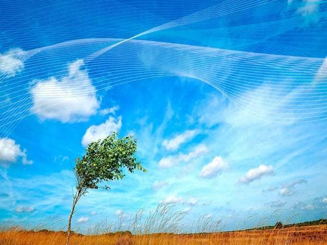 Frasi sul vento