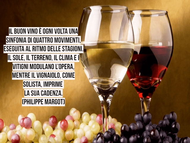 vino frasi 3