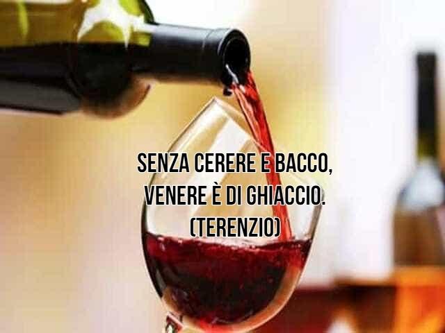 vino frasi 6