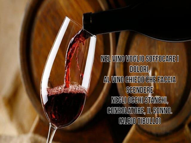 vino frasi 7